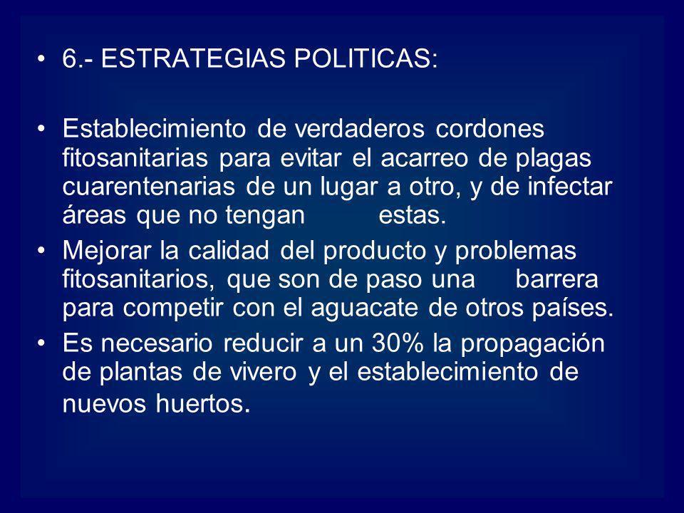 6.- ESTRATEGIAS POLITICAS: