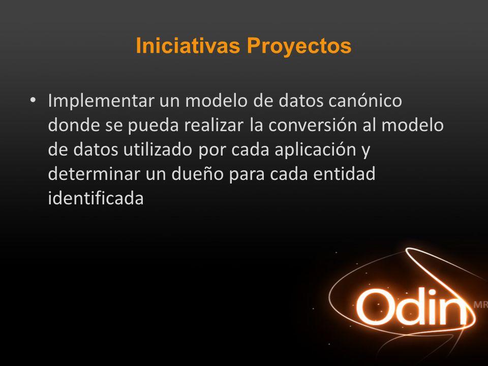 Iniciativas Proyectos