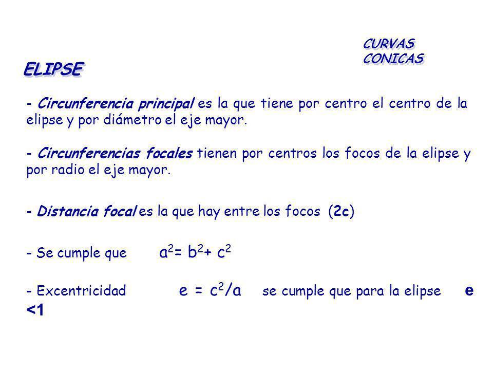 CURVAS CONICAS ELIPSE. - Circunferencia principal es la que tiene por centro el centro de la elipse y por diámetro el eje mayor.