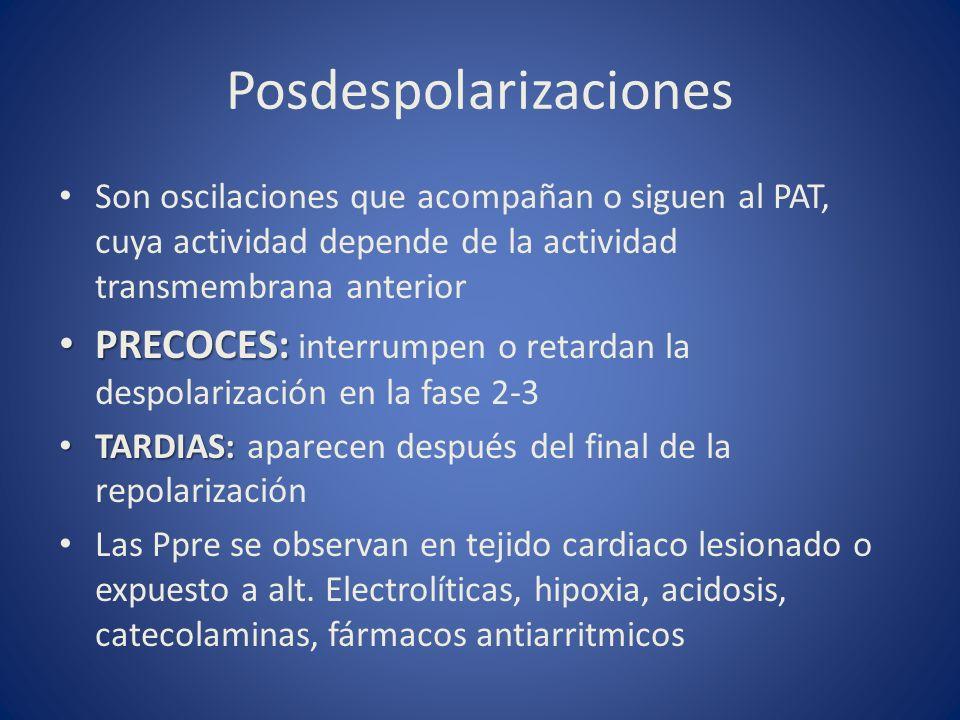 Posdespolarizaciones
