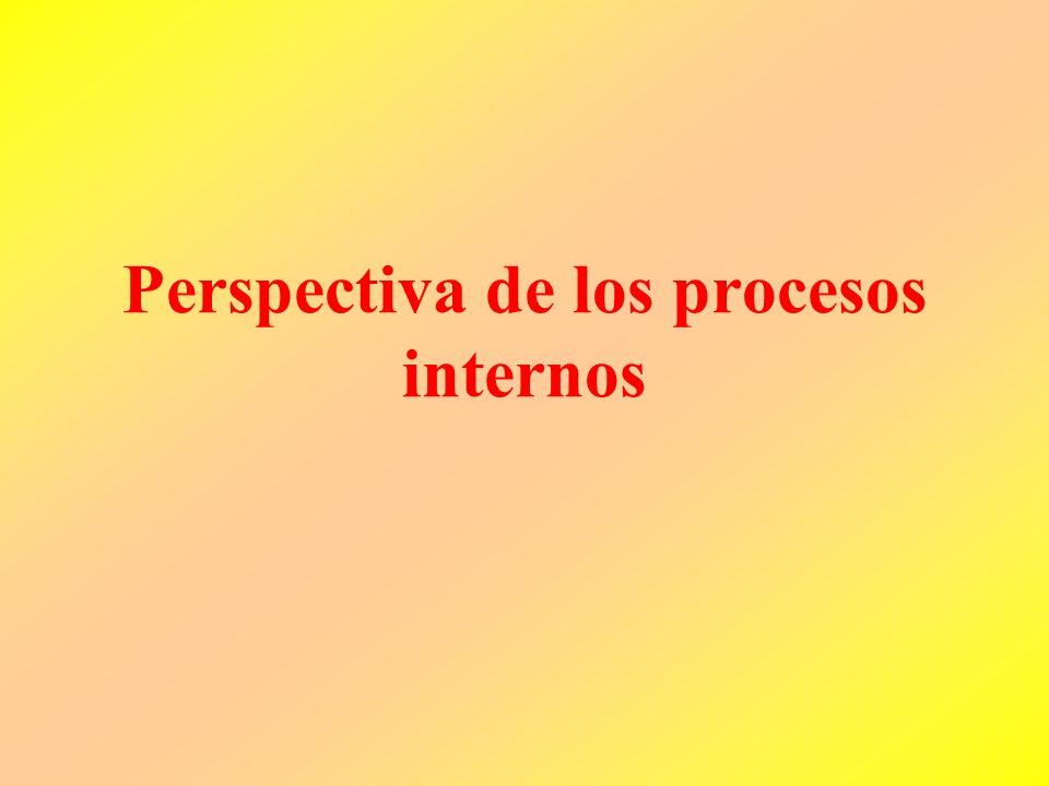 Perspectiva de los procesos internos
