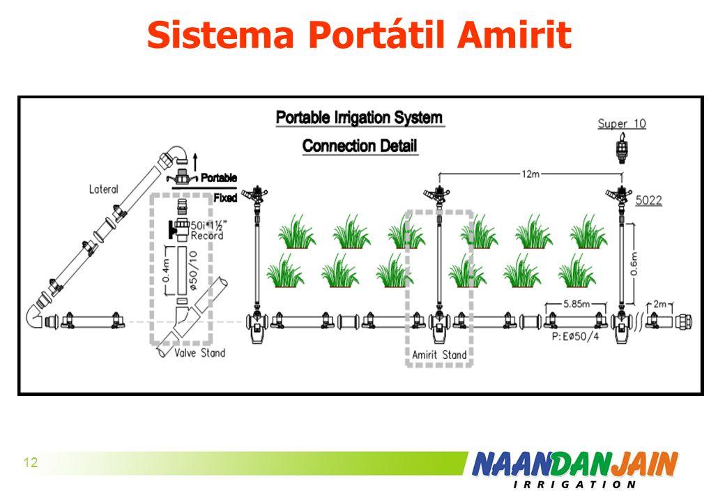 Sistema Portátil Amirit