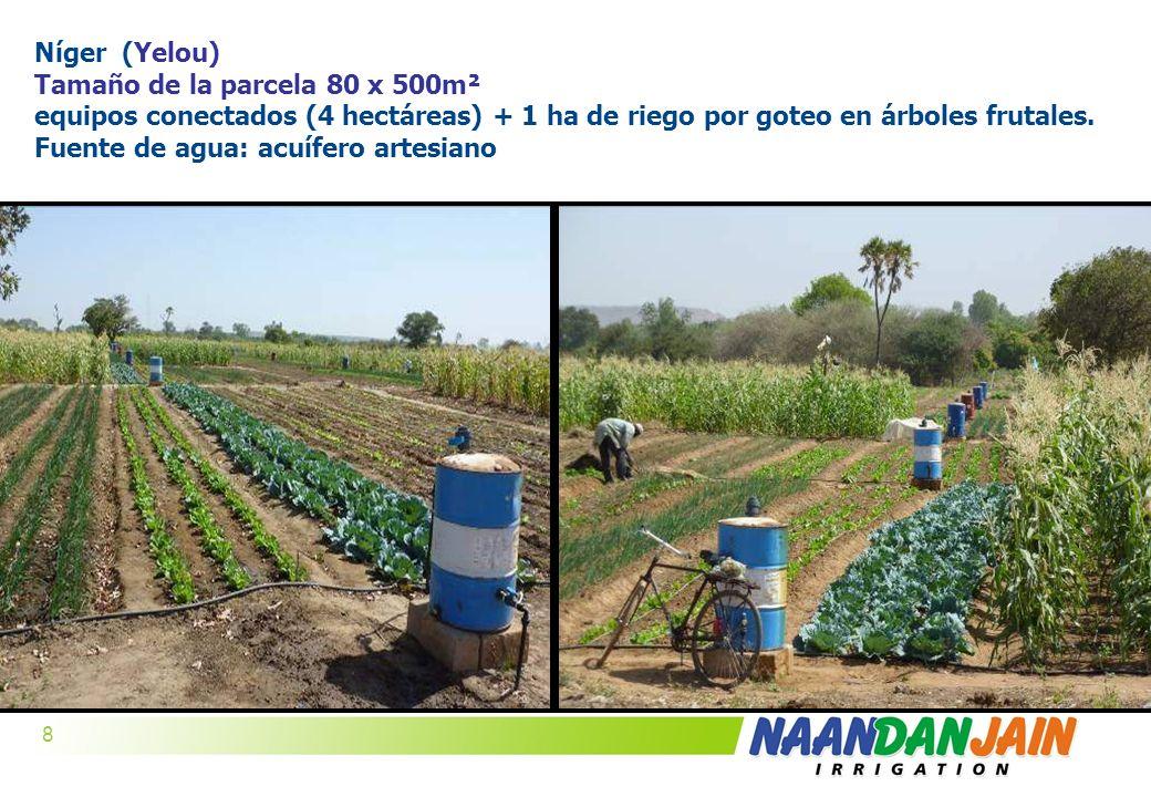 Níger (Yelou) Tamaño de la parcela 80 x 500m².