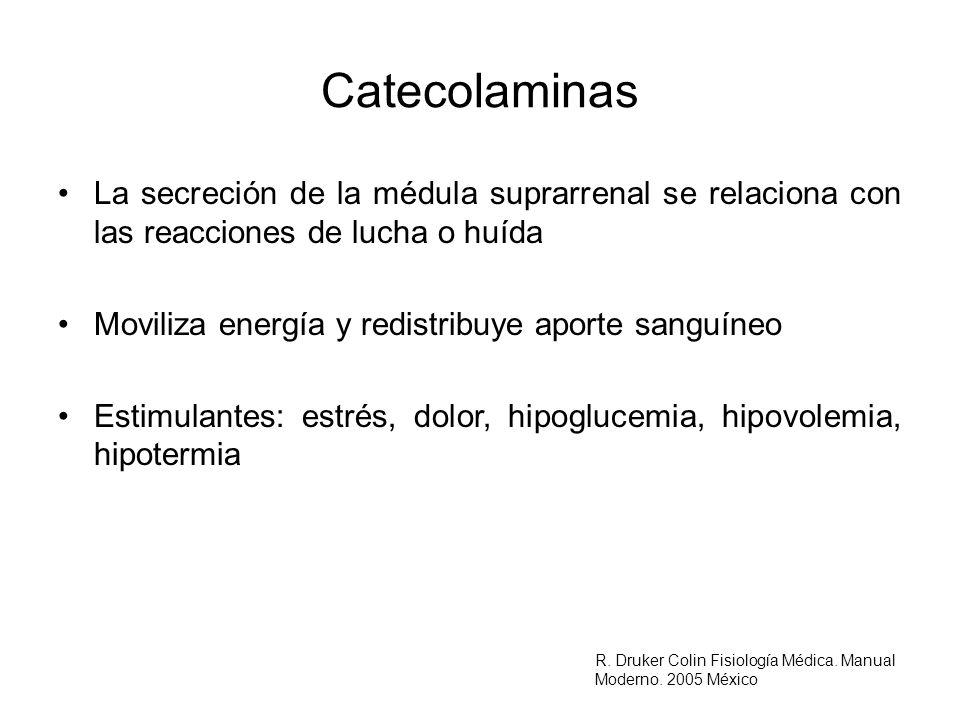 CatecolaminasLa secreción de la médula suprarrenal se relaciona con las reacciones de lucha o huída.