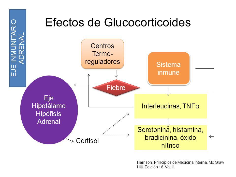 Efectos de Glucocorticoides