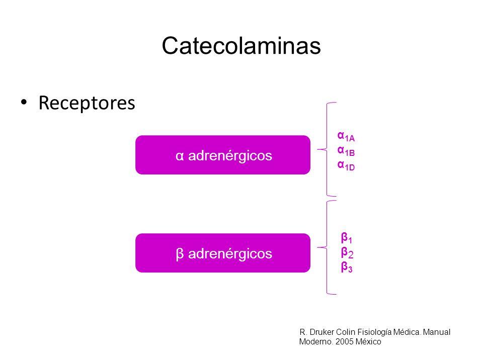 Catecolaminas Receptores α adrenérgicos β adrenérgicos α1A α1B α1D β1