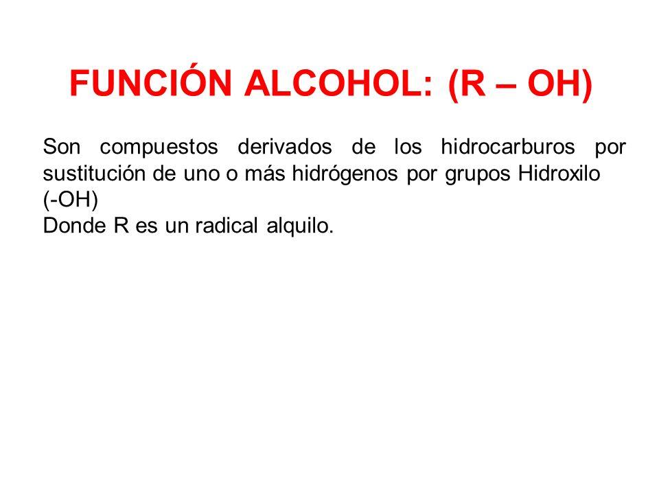 FUNCIÓN ALCOHOL: (R – OH)