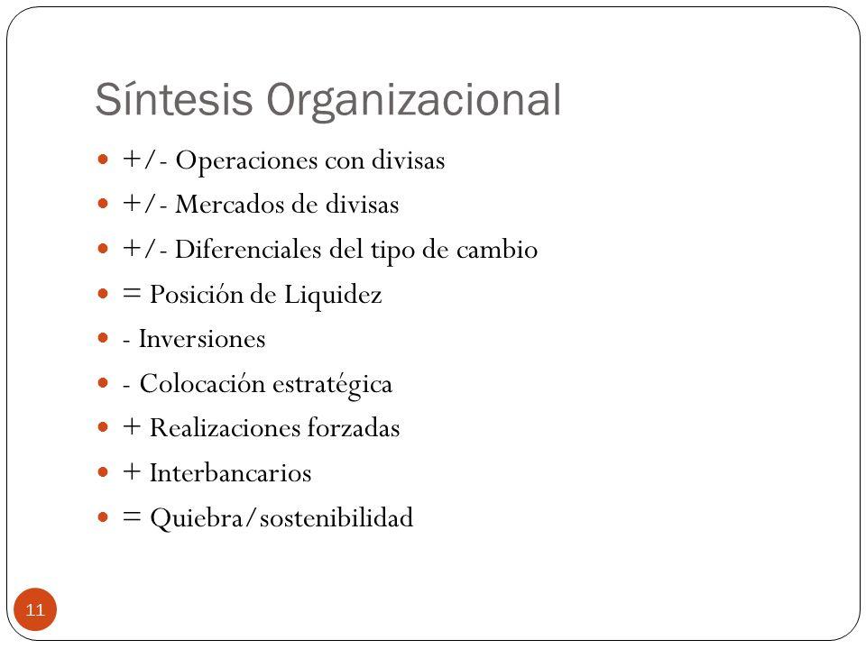 Síntesis Organizacional