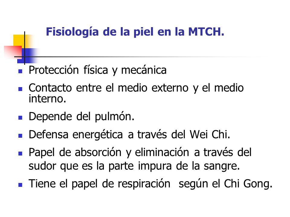 Fisiología de la piel en la MTCH.