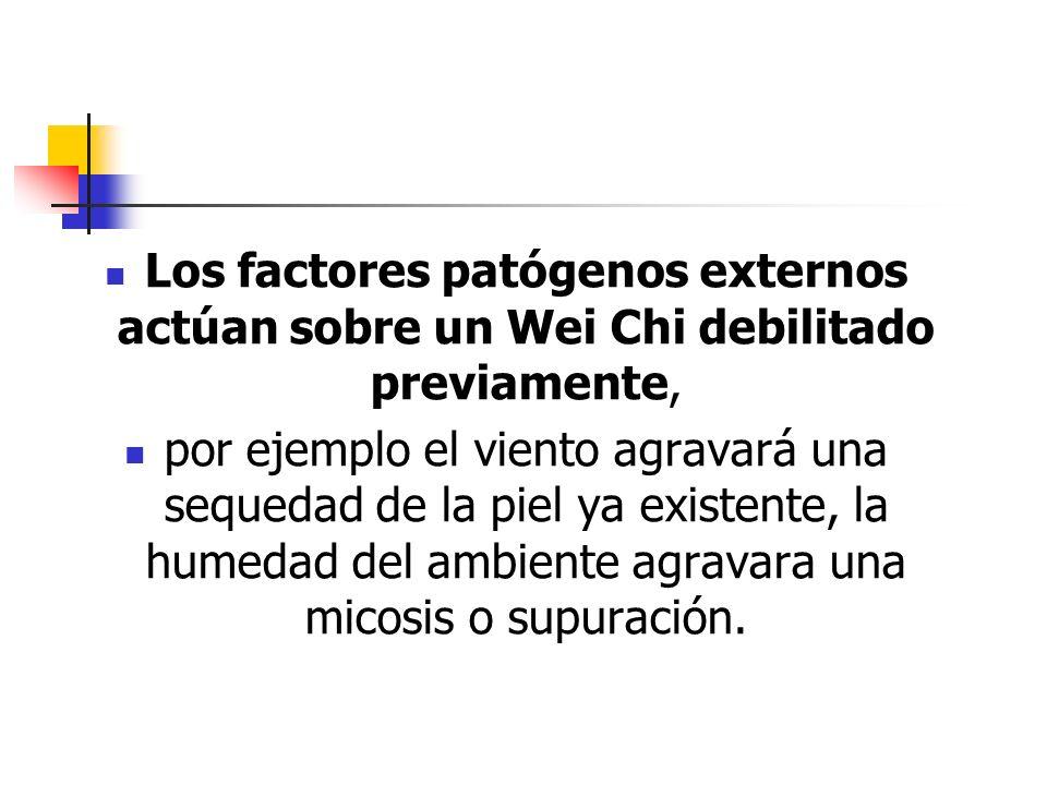 Los factores patógenos externos actúan sobre un Wei Chi debilitado previamente,
