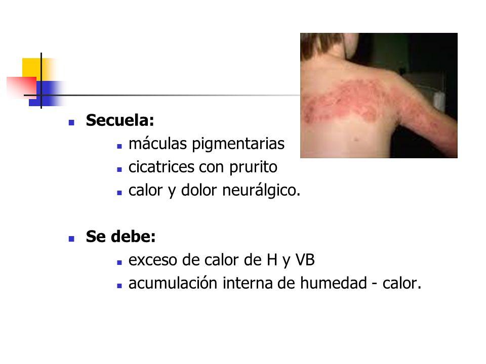 Secuela:máculas pigmentarias. cicatrices con prurito. calor y dolor neurálgico. Se debe: exceso de calor de H y VB.