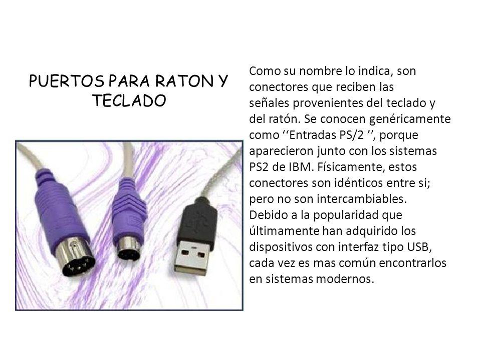 PUERTOS PARA RATON Y TECLADO