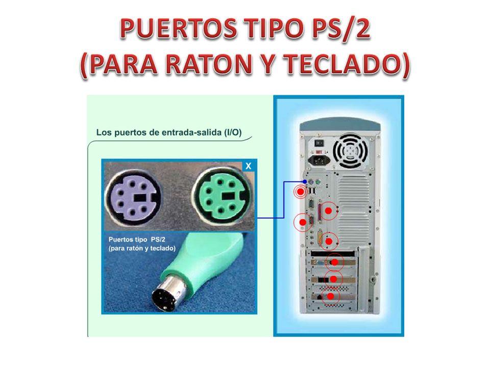 PUERTOS TIPO PS/2 (PARA RATON Y TECLADO)