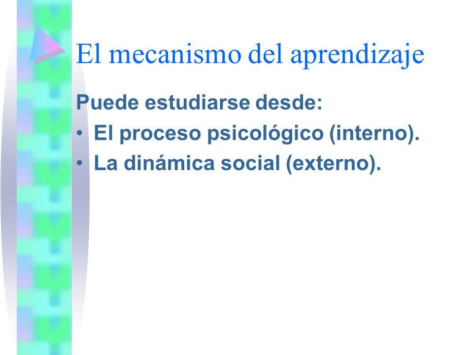 El mecanismo del aprendizaje