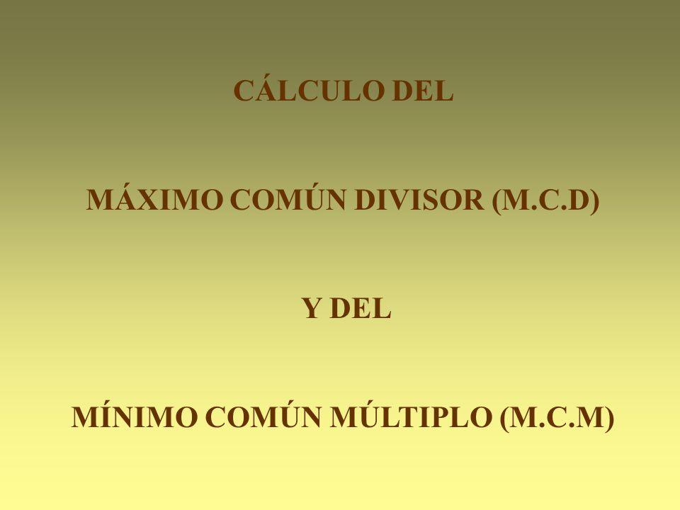 MÁXIMO COMÚN DIVISOR (M.C.D) MÍNIMO COMÚN MÚLTIPLO (M.C.M)