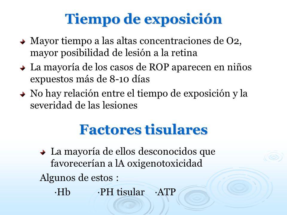 Tiempo de exposición Factores tisulares