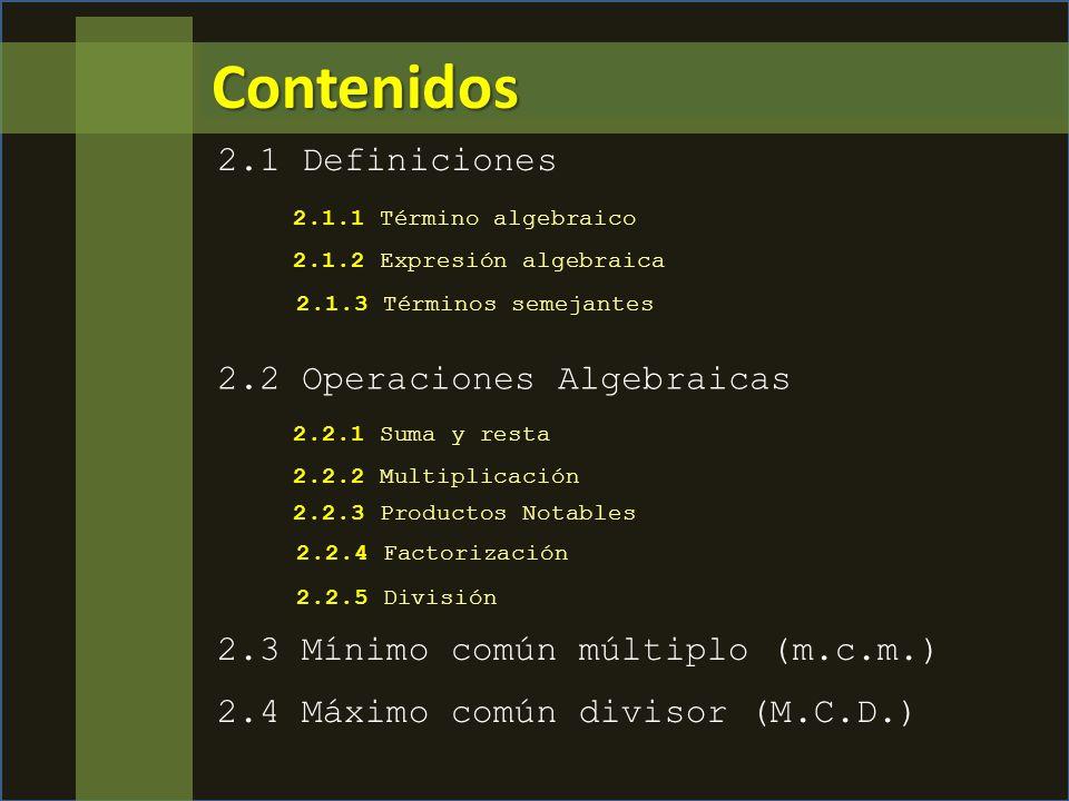 Contenidos 2.1 Definiciones 2.2 Operaciones Algebraicas