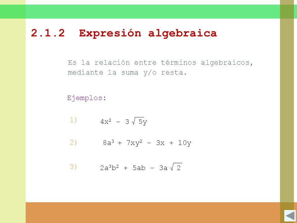 2.1.2 Expresión algebraica Es la relación entre términos algebraicos, mediante la suma y/o resta. Ejemplos: