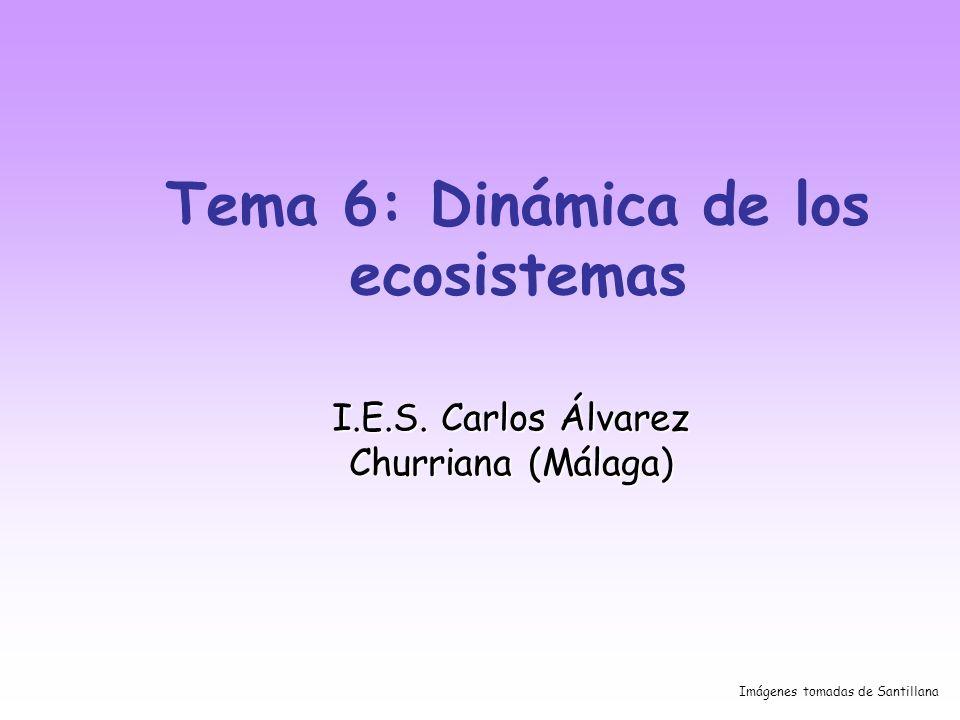 Tema 6: Dinámica de los ecosistemas