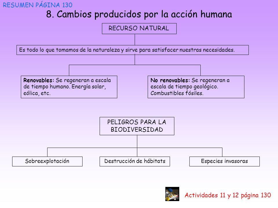8. Cambios producidos por la acción humana