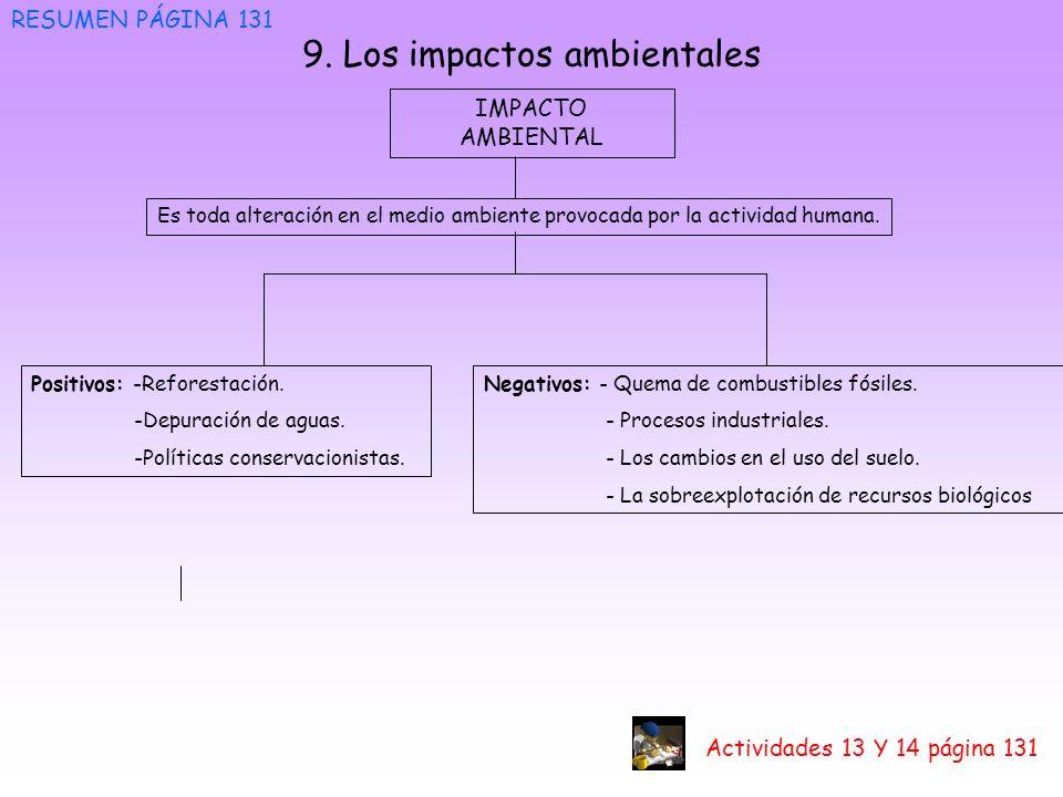9. Los impactos ambientales