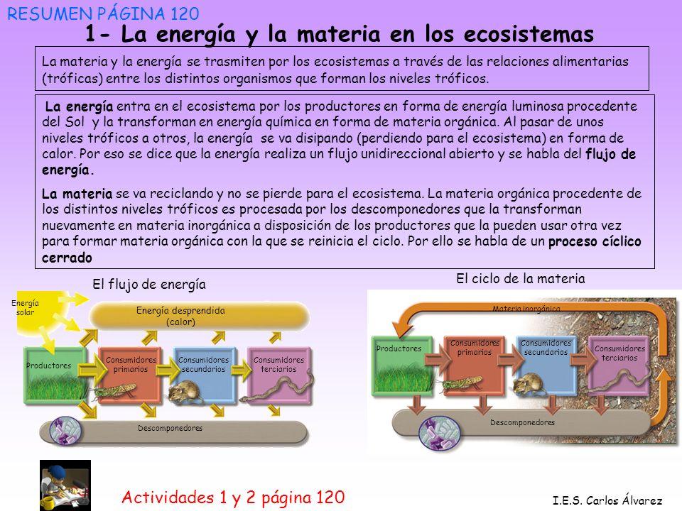 1- La energía y la materia en los ecosistemas