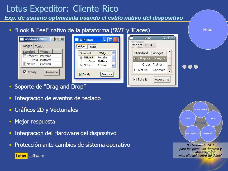 Lotus Expeditor: Cliente Rico