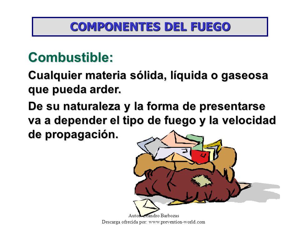 Combustible: COMPONENTES DEL FUEGO
