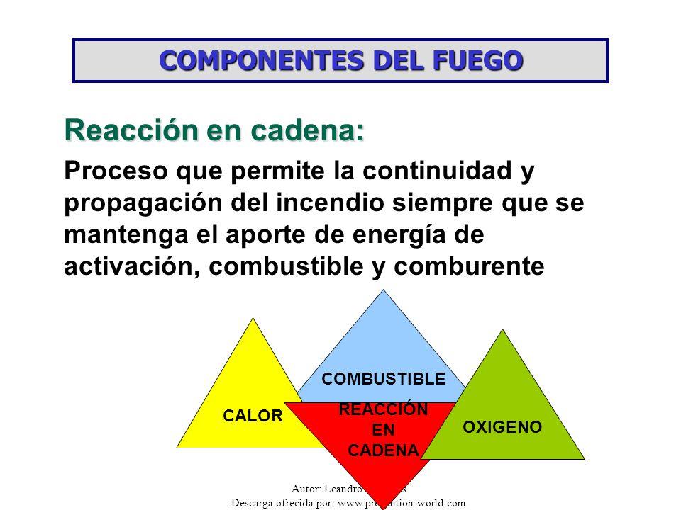 Reacción en cadena: COMPONENTES DEL FUEGO