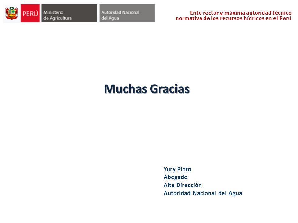 Muchas Gracias Yury Pinto Abogado Alta Dirección