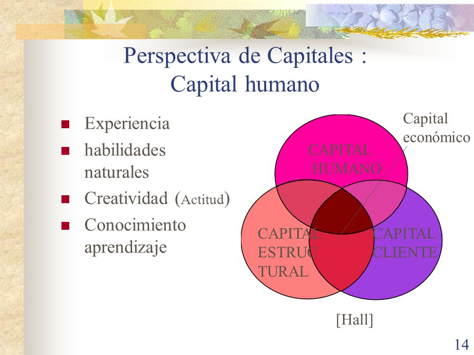 Perspectiva de Capitales : Capital humano