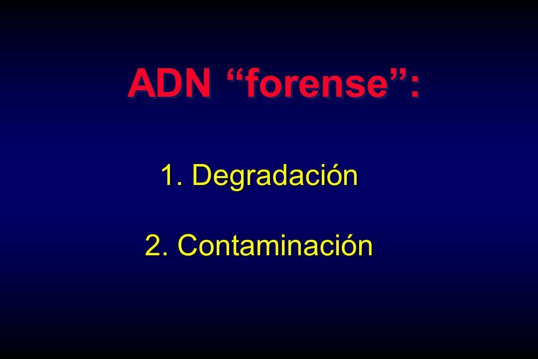ADN forense : 1. Degradación 2. Contaminación