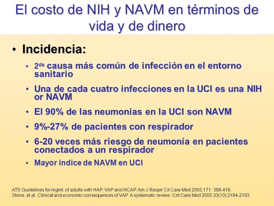 El costo de NIH y NAVM en términos de vida y de dinero