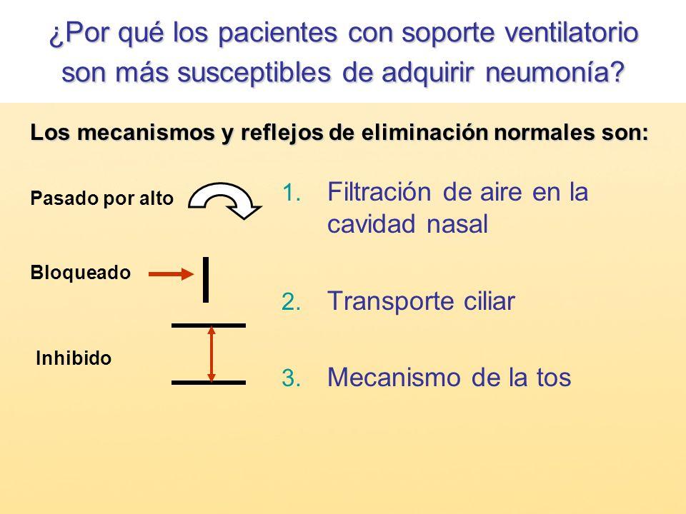 ¿Por qué los pacientes con soporte ventilatorio son más susceptibles de adquirir neumonía
