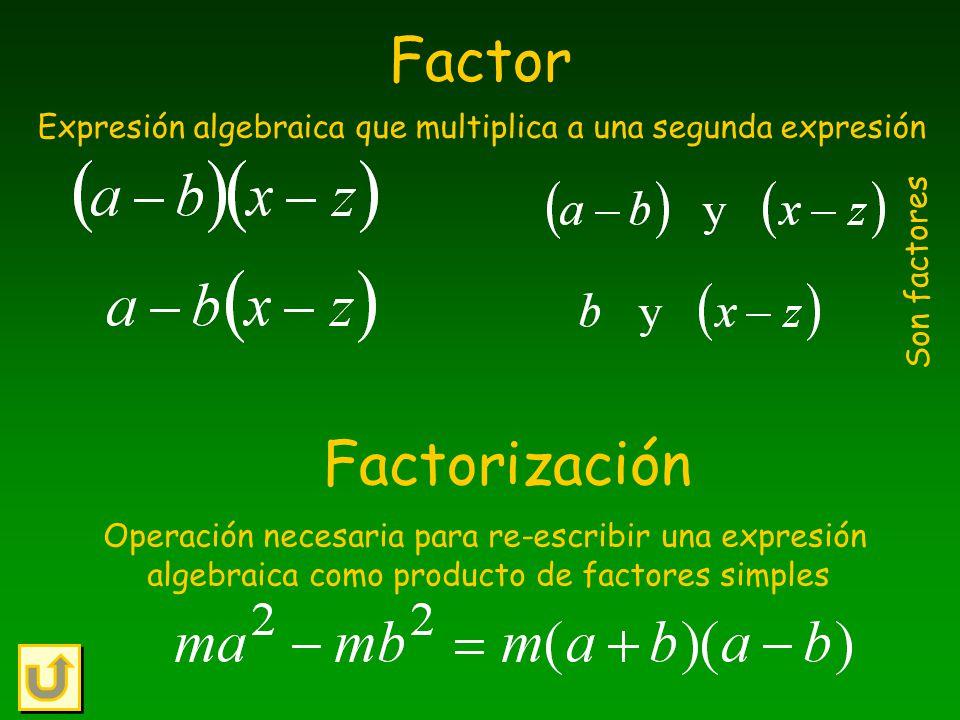 Expresión algebraica que multiplica a una segunda expresión
