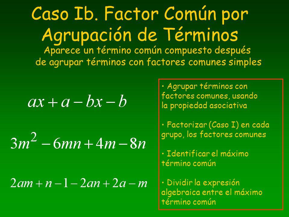 Caso Ib. Factor Común por Agrupación de Términos