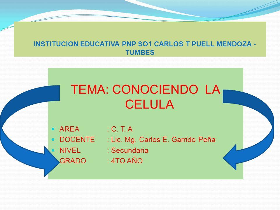 INSTITUCION EDUCATIVA PNP SO1 CARLOS T PUELL MENDOZA - TUMBES