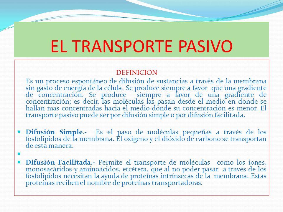 EL TRANSPORTE PASIVO DEFINICION