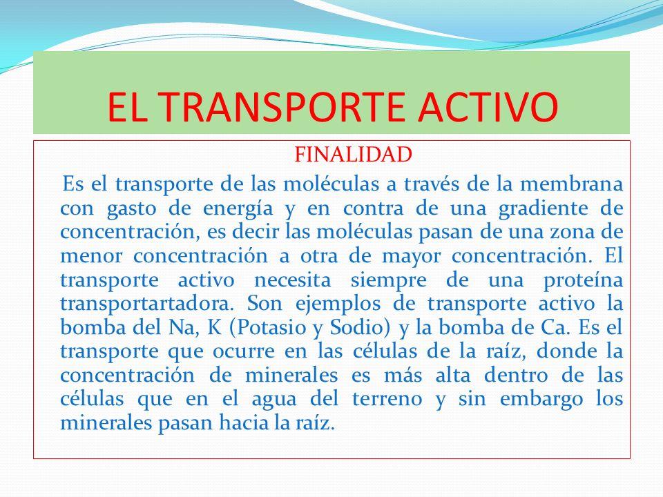 EL TRANSPORTE ACTIVO FINALIDAD