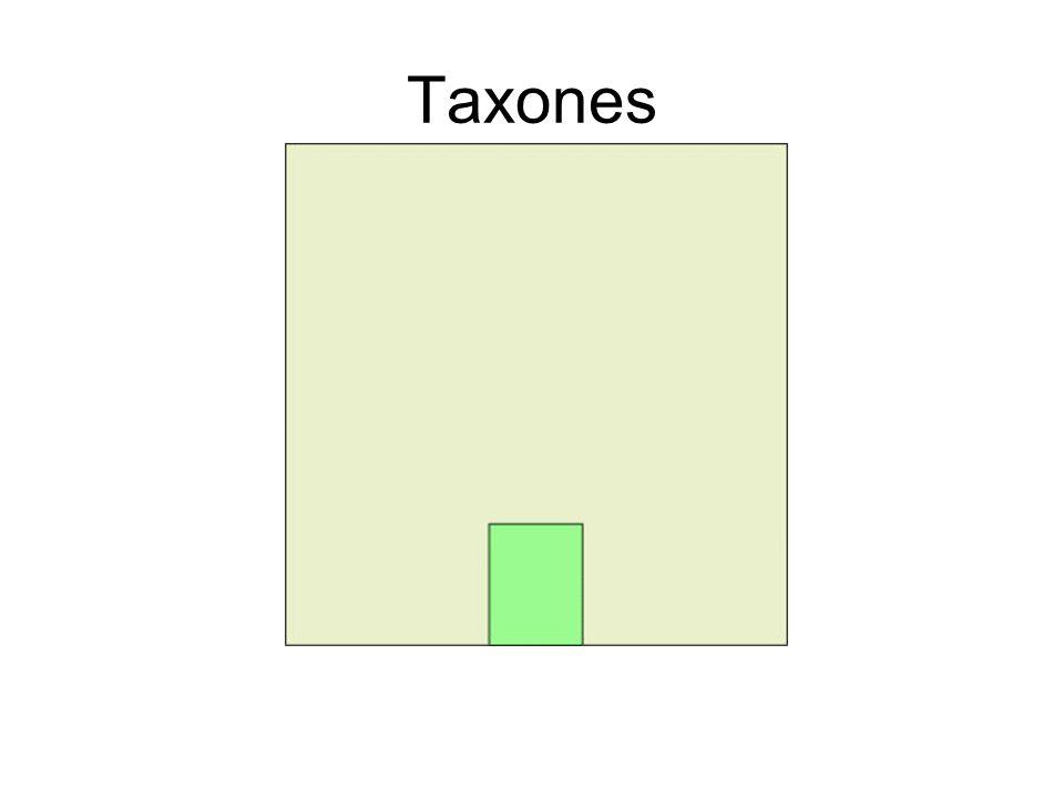 Taxones
