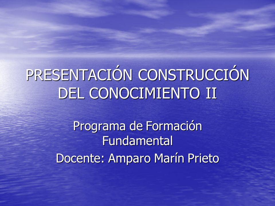 PRESENTACIÓN CONSTRUCCIÓN DEL CONOCIMIENTO II