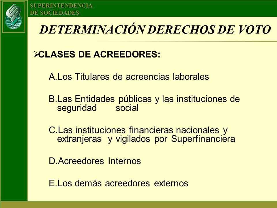 DETERMINACIÓN DERECHOS DE VOTO