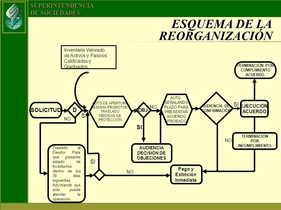 ESQUEMA DE LA REORGANIZACIÓN