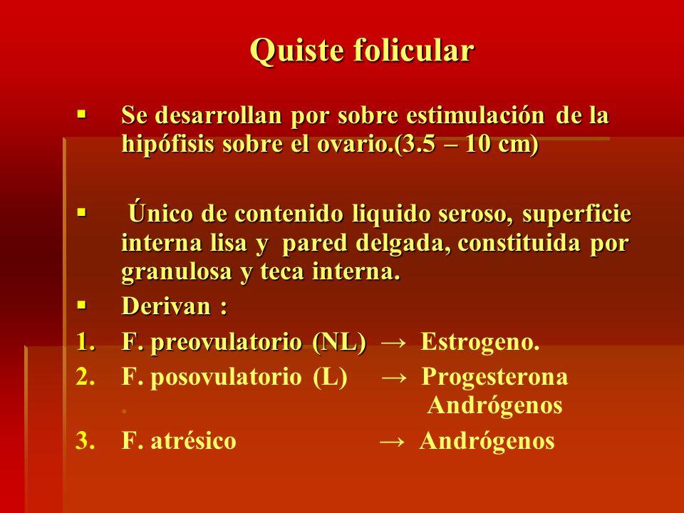 Quiste folicularSe desarrollan por sobre estimulación de la hipófisis sobre el ovario.(3.5 – 10 cm)