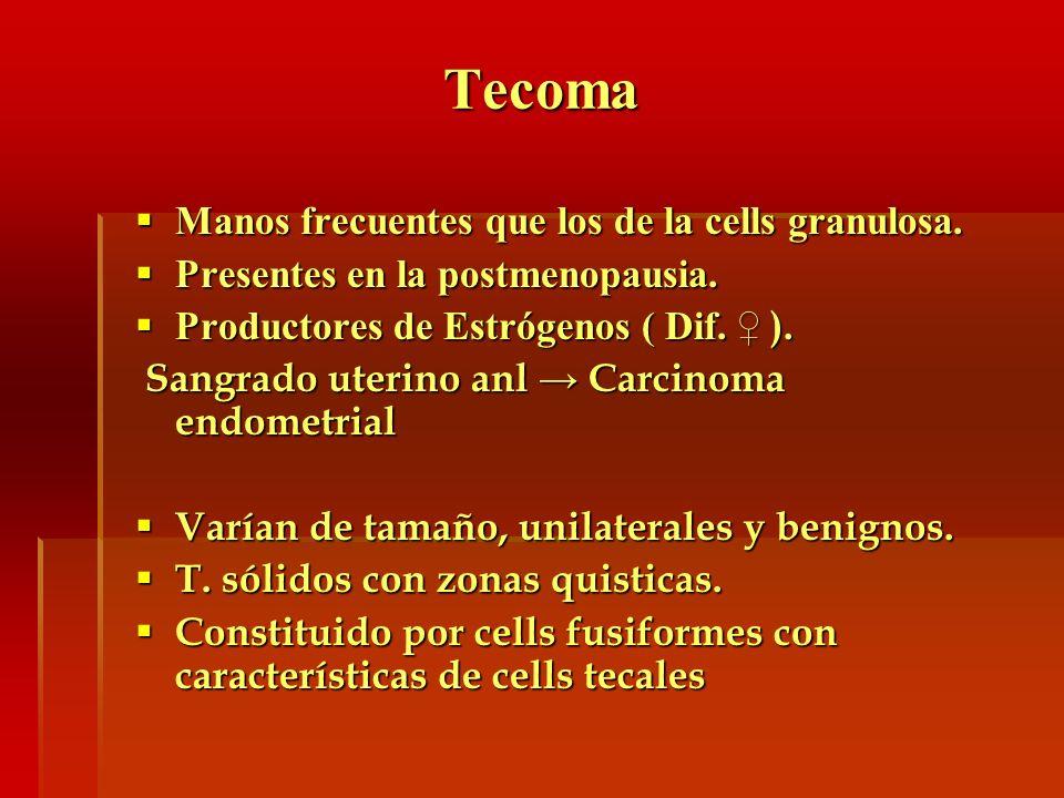 Tecoma Manos frecuentes que los de la cells granulosa.