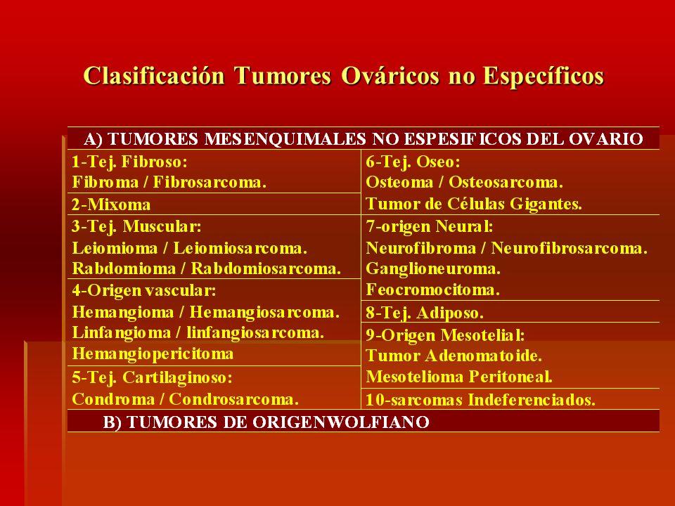 Clasificación Tumores Ováricos no Específicos