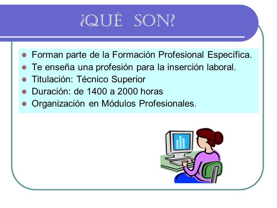 ¿QUÉ SON Forman parte de la Formación Profesional Específica.