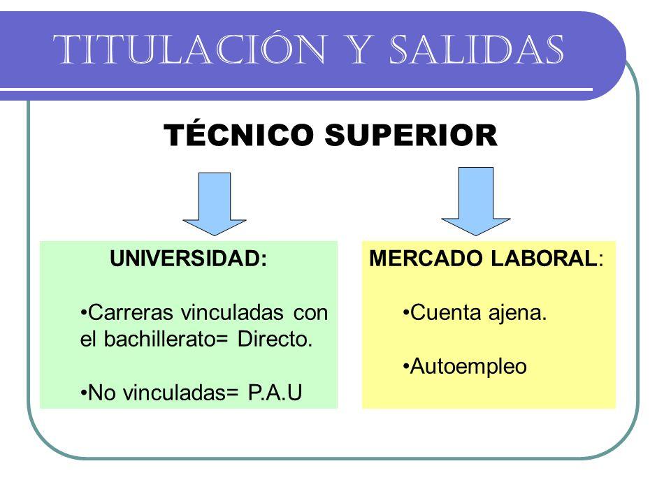 TITULACIÓN Y SALIDAS TÉCNICO SUPERIOR UNIVERSIDAD: