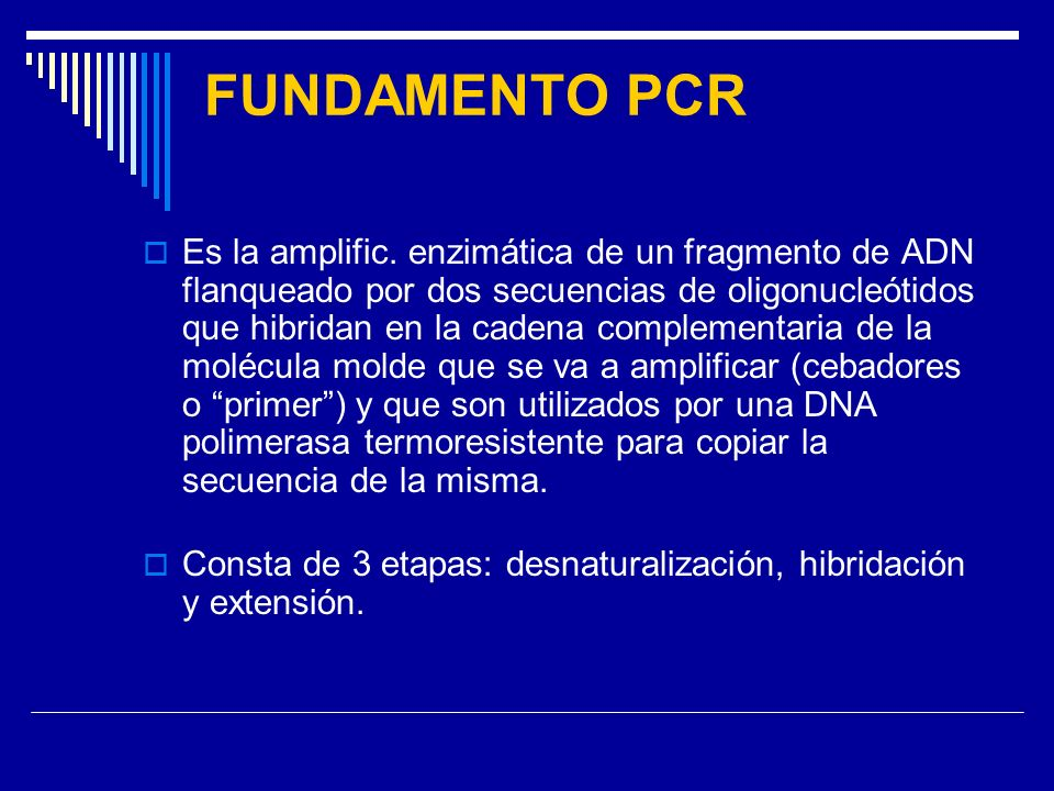 FUNDAMENTO PCR
