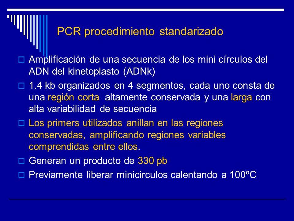 PCR procedimiento standarizado